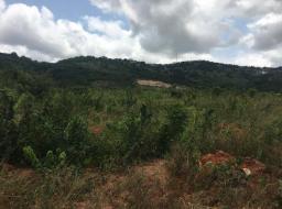 serviced land for sale at Ayi Mensah