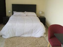 3 bedroom furnished apartment for rent at Tse Addo