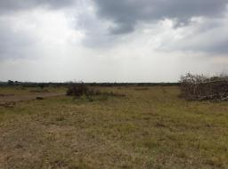 serviced land for sale at AFIENYA - SHAI HILLS GATED COMMUNITY LAN
