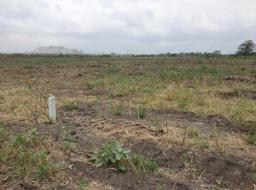 serviced land for sale at AFIENYA PAY LESS ON LIMITED HALF PLOT