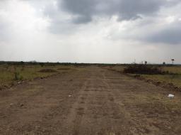 serviced land for sale at afienya -shai hills half plot @ low cost