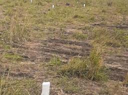 serviced land for sale at MIOTSO-PRAMPRAM