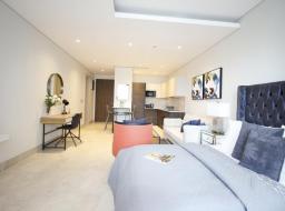 1 bedroom furnished apartment for rent at Labone