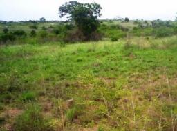 land for sale at Kasoa