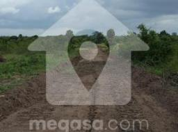 serviced land for sale at Afienya