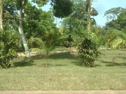 serviced land for sale at Peduase Presidential Lodge