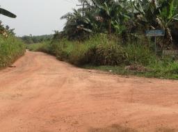 land for rent at Kanfakrom, Ahanta West district, Takoradi