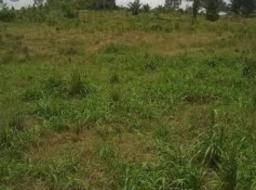 serviced land for sale at Ablekuma