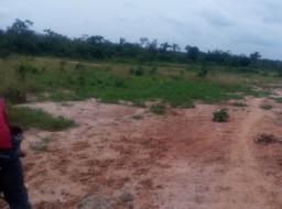 land for sale at Midea