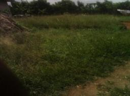 serviced land for sale at Nsawam
