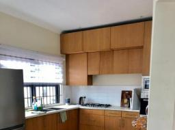 2 bedroom furnished apartment for rent at Dzorwulu