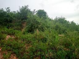 land for sale at Madina